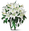 Send Sympathy flowers to Bangalore, Send Condolence wreath to Bangalore